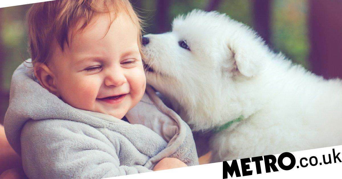 Mum demands pet owner changes dog's name as she wants it for her child