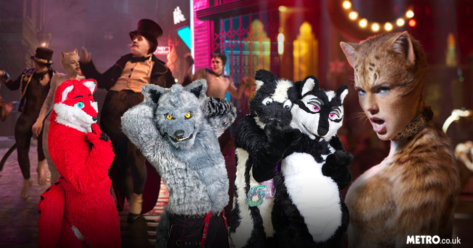 Cats Trailer What Does The Furry Community Think We Ask