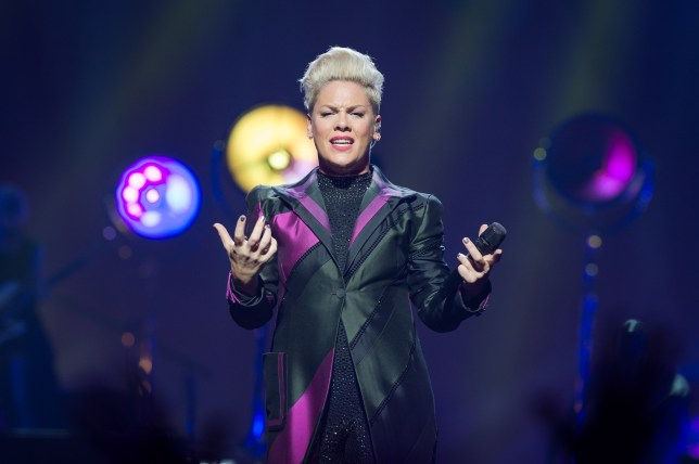 Pink pokes fun at herself as she falls for online hoax alongside other celebrities