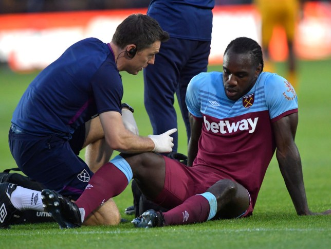 Michail Antonio could be out for six weeks (Picture: Getty)