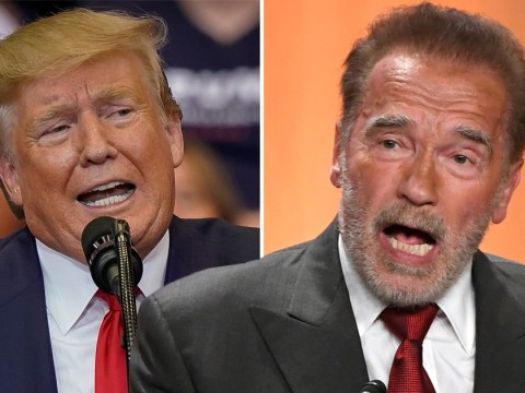 Arnold Schwarzenegger takes aim at Donald Trump over racist comments