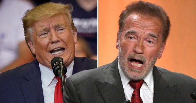 Arnold Schwarzenegger has hit out at Donald Trump over his racist comments