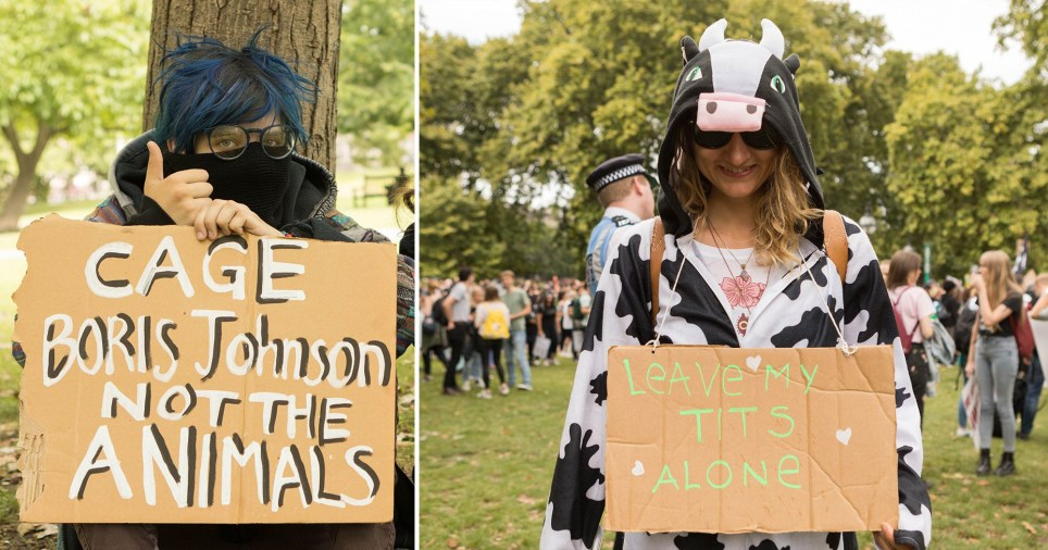 Protesters at 2019 Animal Rights March in London