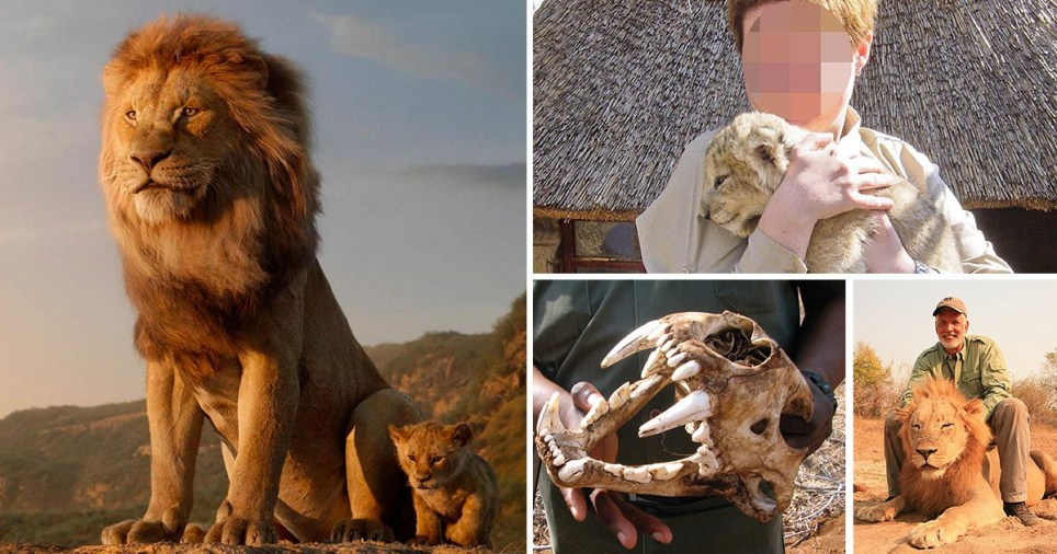 Lion King film