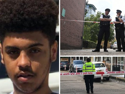 Two further arrests made after teen, 16, was knifed to death in 'machete' attack