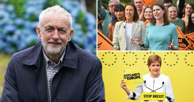 Jeremy Corbyn and pro-remain MPs and MSPs