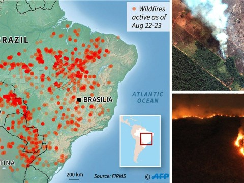 Map shows huge scale of fires ravaging Amazon rainforest