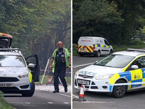 Two dead and two teenagers fighting for life after BMW crashes into tree