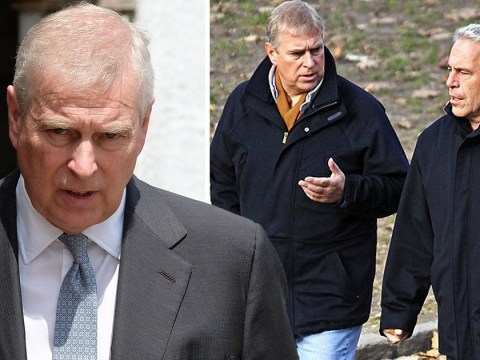 Prince Andrew denies knowledge of convicted sex offender Jeffrey Epstein's behaviour