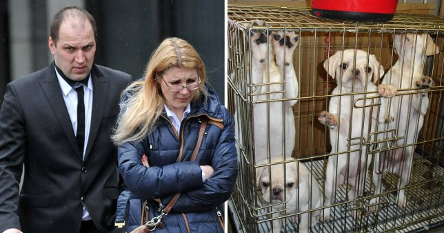 Laura Kiseliova has been on the run for more than two years for animal trafficking