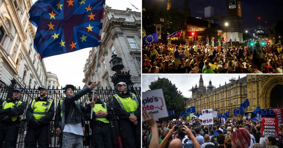 Pro-EU supporters protesting yesterday
