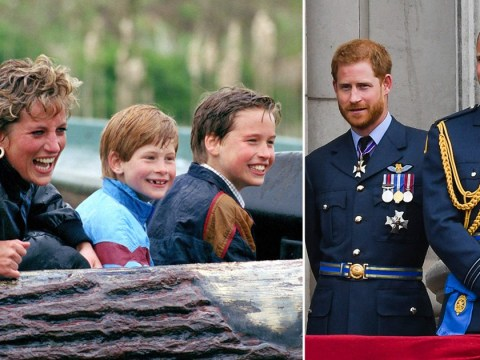 Princes William and Harry will mark anniversary of Princess Diana's death together