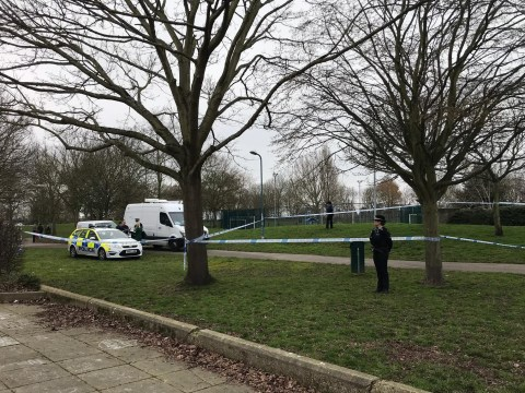 'Drug dealer' accused of stabbing PC in park was 'like a caged animal'