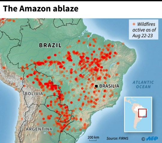 Image result for map image of amazon fires