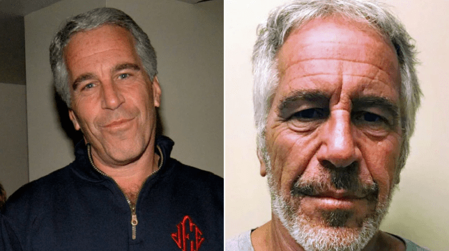 Image result for Financier Jeffrey Epstein reportedly takes own life in jail