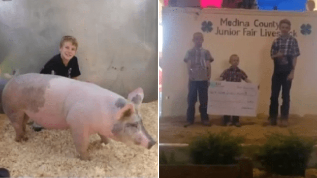 Picture of Austin Lettner with his pig Millhouse and photo of Austin and his siblings collecting paycheck after auctioning Austin off