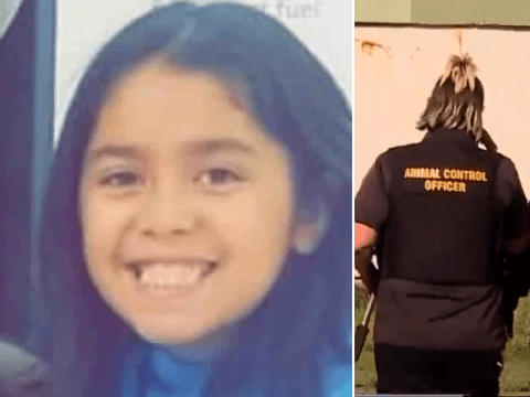 Girl, 9, died after pit bulls pulled her off her bike and ripped her neck apart
