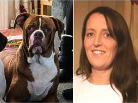 Woman, 43, mauled to death by two dogs