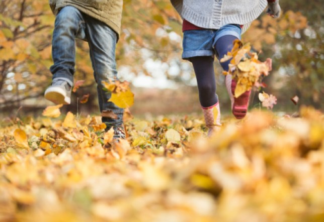 Two people walking in autumn leaves and kicking them