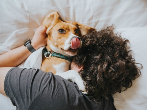 Most men feel 'emotionally closer' to their dog than any other human being