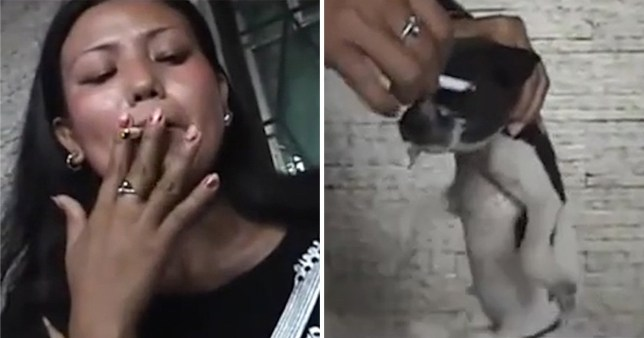 Woman who was filmed burning cigarette on puppy's eye
