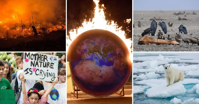 Global warming 'threatens the existence of human civilisations' and we need to cut emissions immediately, researchers warned (Picture: Getty)