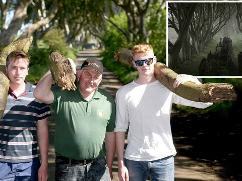 Game of Thrones superfan buys iconic tree from HBO show and gets family to bring it home
