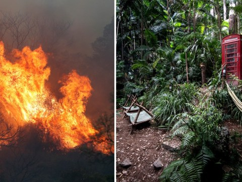 I'm A Celebrity in jeopardy as 'out of control' bush fires threaten to reach jungle camp