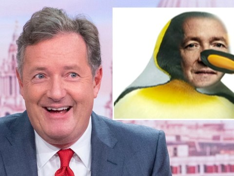 Piers Morgan feels 'empowered' after receiving record-breaking complaints for identifying as a penguin