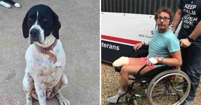 John Hopkins is adopting amputee dog Popsey (Picture: Gofundme)