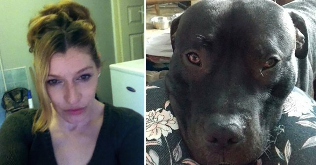 Split picture showing Sonya Wadsworth (left) and dog Tyson