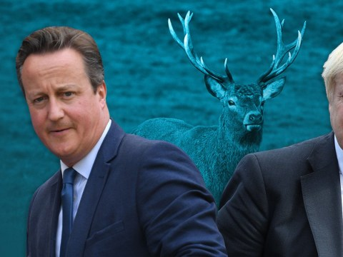 David Cameron shot a stag and called it Boris
