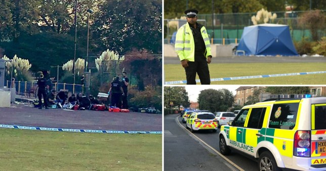 The victim, 15, was found with stab wounds in Salt Hill Park in Slough