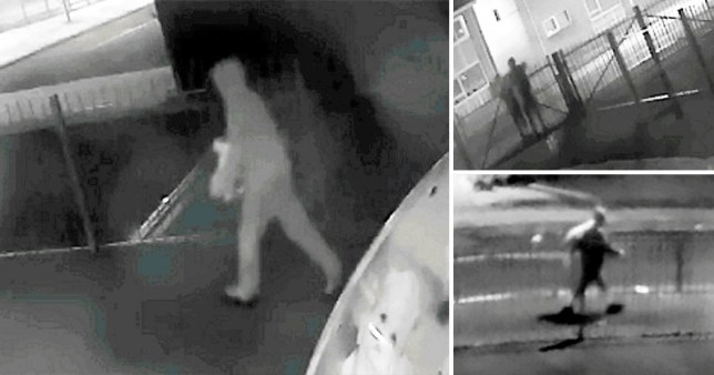 Mystery milk thief has stolen 1,000 cartons from primary school in four months