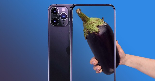 People are using their iPhone 11 Pro to cockfish