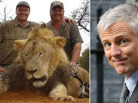 UK to ban import of trophy hunting souvenirs to help endangered animals