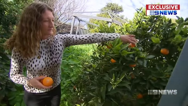 Vegan woman loses legal challenge to stop her neighbours having barbecues (Picture: Nine News Perth)