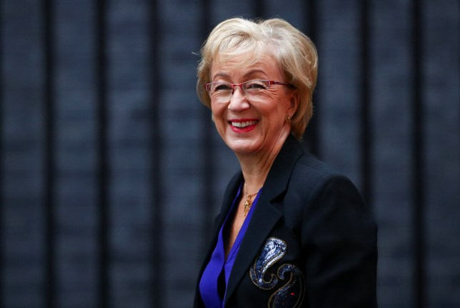 Britain's??Secretary??of State for??Business Andrea Leadsom is seen outside Downing Street in London, Britain, September 4, 2019. REUTERS/Hannah McKay