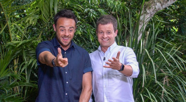 Anthony McPartlin and Declan Donnelly presenting 'I'm a Celebrity... Get Me Out of Here!' in 2017