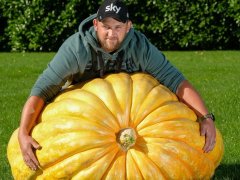 'Monster' 45-stone pumpkin battles for giant veg prize