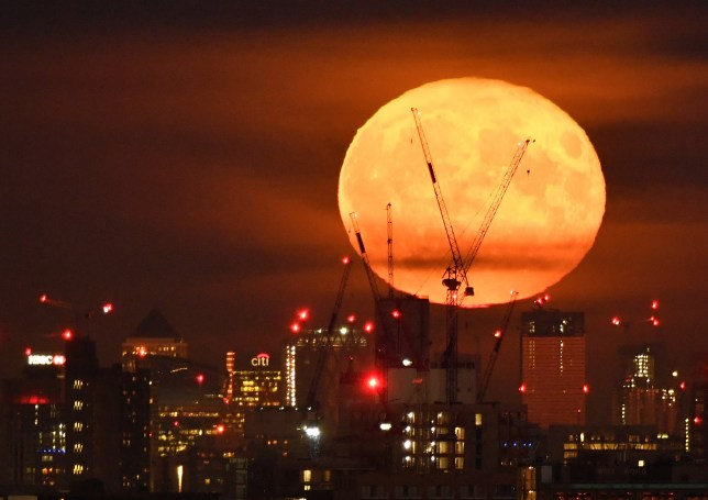 The full moon is seen rising behind skyscrapers at Canary Wharf and the London skyline, London, Britain, September 14, 2019. Picture taken on September 14. REUTERS/Toby Melville
