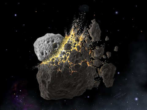 Cataclysmic asteroid collision 470m years ago was crucial for life on Earth