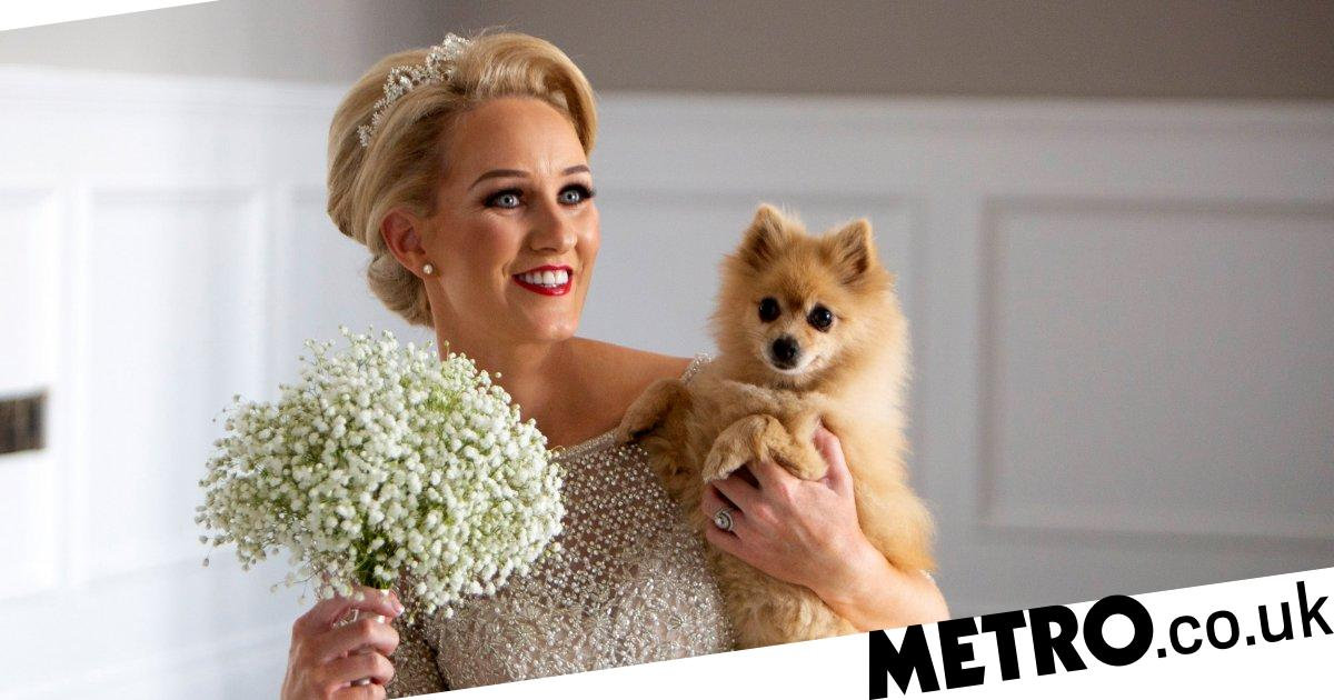 Bride walks down the aisle with eight disabled rescue dogs by her side