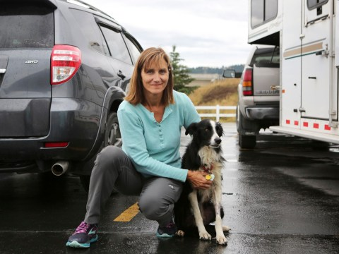 Woman who quit her job to search for her missing border collie finds her after 57 days
