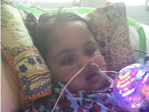 Judge to decide if seriously ill girl, 5, should be allowed to die