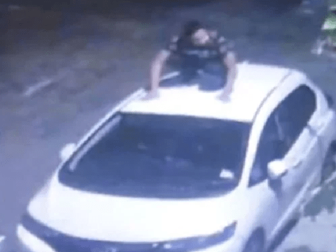 Family hunting for man who pooed on their new car