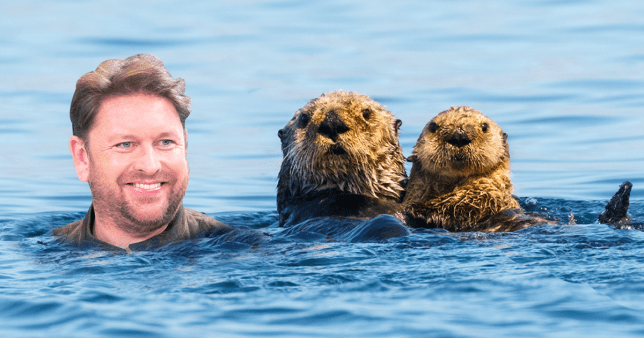 James Martin 'identifies as an otter' as he loses it over Fireman Sam controversy