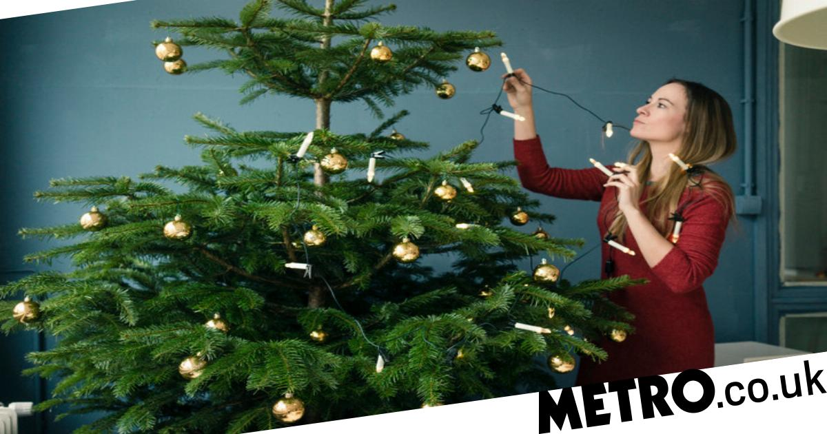ikea christmas tree just 9 annual deal
