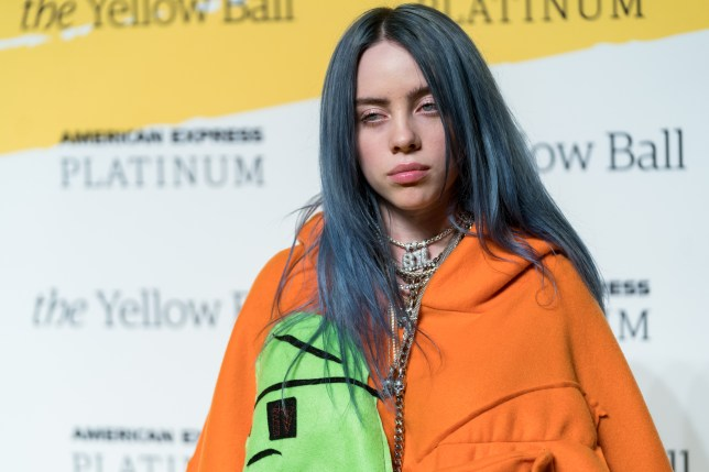 Billie Eilish insists she isn't 's**tting on fame with new song Everything I Wanted