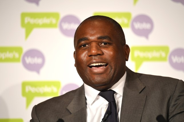 David Lammy campaigning for the People's Vote